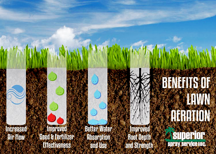 Best Lawn Fertilizer >> Aeration. Is the grass greener on the other side? Superior SpraySuperior Spray