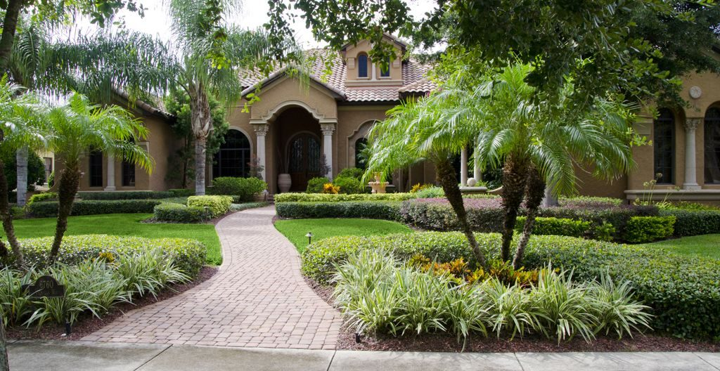 perfect tree landscaping florida