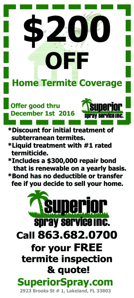 What you should know about termites offer Superior Spray