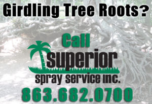 superior spray root girdling