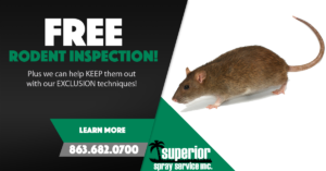 keep rodents out free inspection