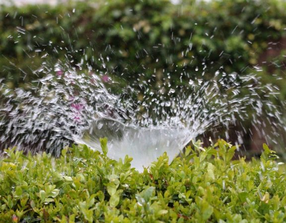 taking care of your lawn in cooler weather