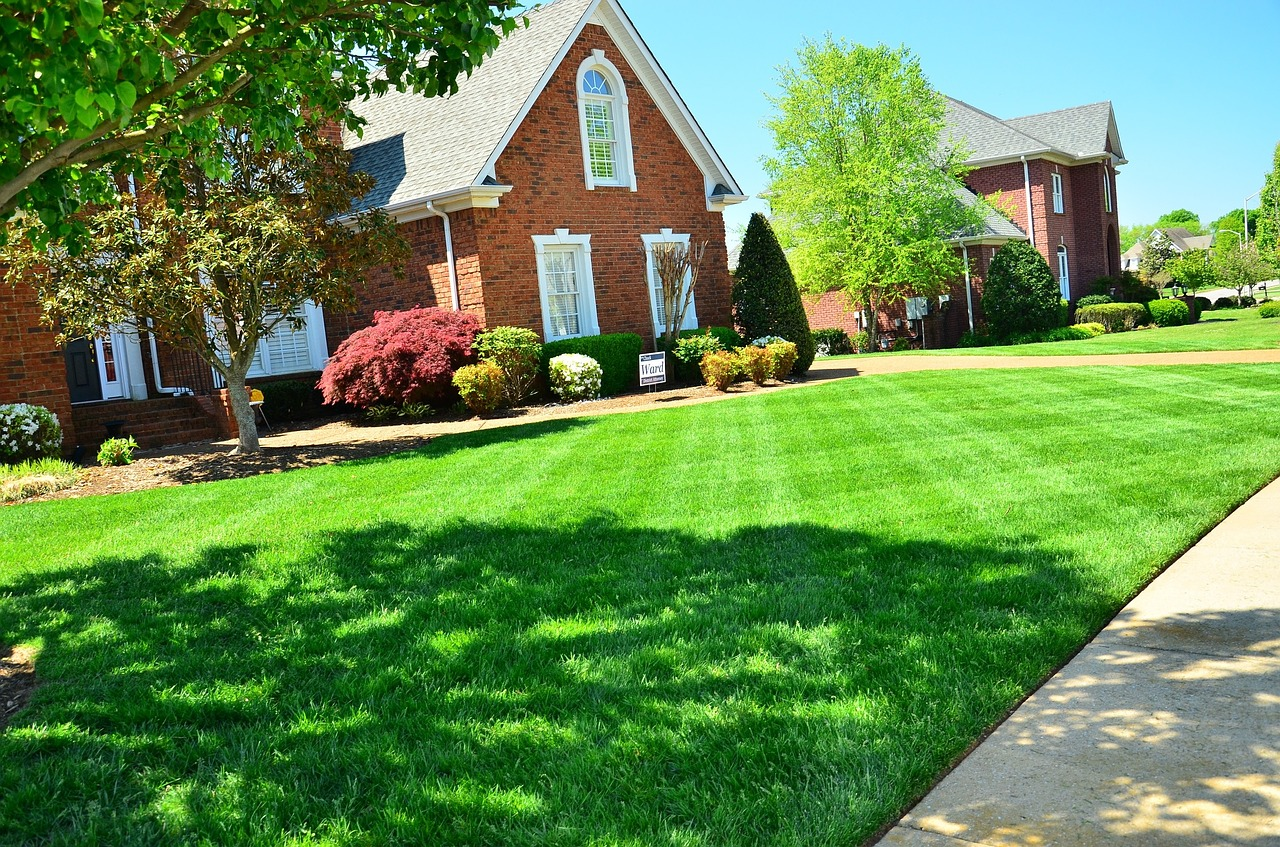 after lawn aeration