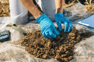 Soil Analysis by Superior Spray Service - Lakeland Florida