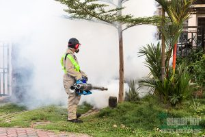 Superior Spray - Insect, Mosquito Control