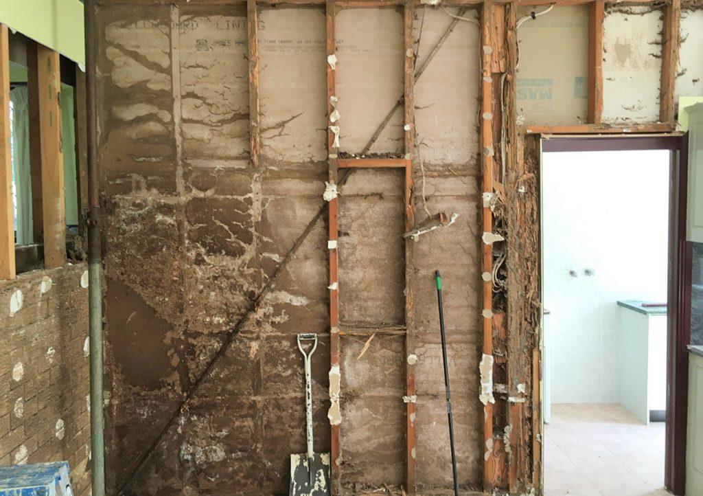 termite destruction home wall Superior Spray Service Florida